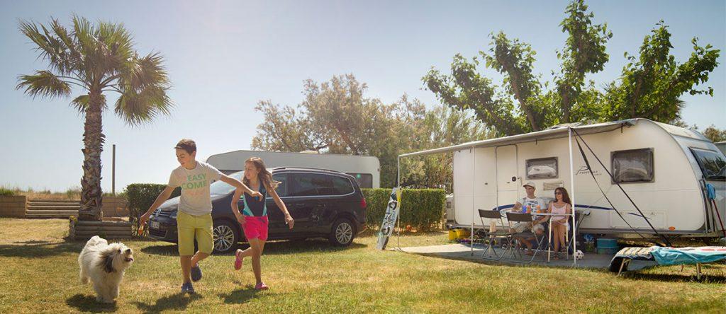 camping ballena alegre con perro