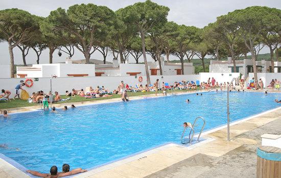 piscina camping pinar san jose caños de meca