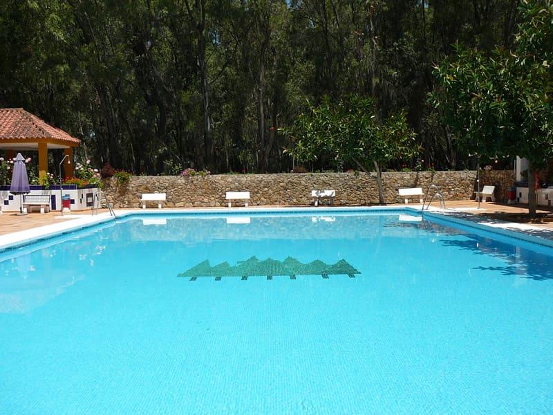 camping los eucaliptos piscina